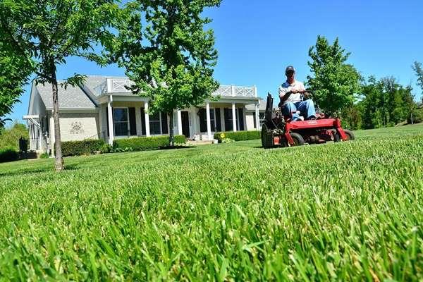 W jaki sprzęt do ogrodu warto zainwestować?